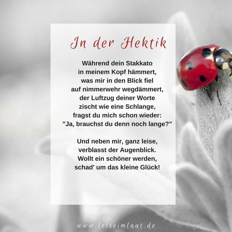 Gedicht Hektik Kinder